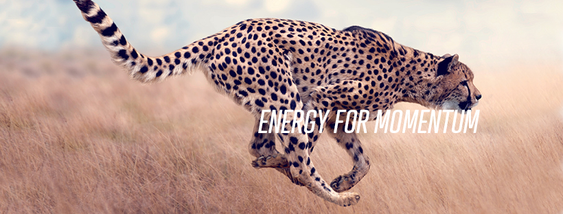 Finder energy for momentum
