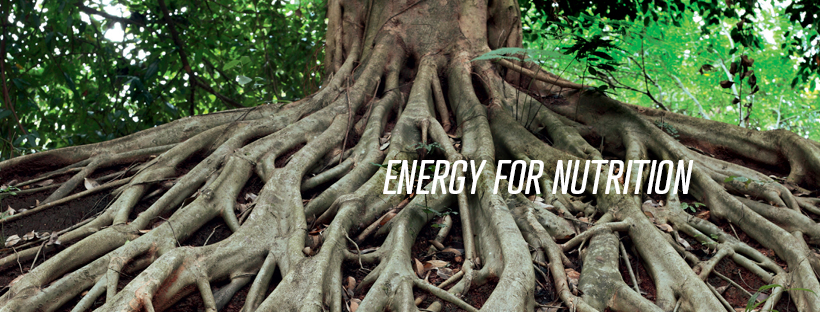 Finder energy for nutrition